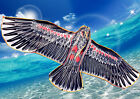 Large Eagle Hawk Shape Kite 160x70cm Line&Winder included OKITE2216&OKLIN2100