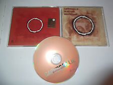 "Capercaillie ‎""Beautiful Wasteland"" CD SURVIVAL UK 1987"