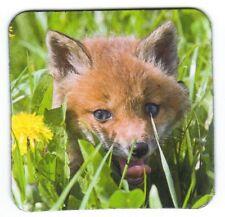 Kühlschrank - Magnet: kleiner Fuchs versteckt sich im Gras - little fox