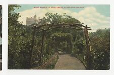Essex, Rose Bower In Shrubbery Southend on Sea IXL Postcard, A530