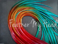 10 Ombre Tie Dye  Feather Hair Extension Real Rooster Feathers In Warm Colors