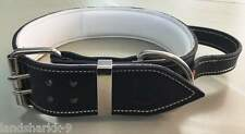 XX-Large Black & White Leather Dog Collar with a Handle for Firm Control