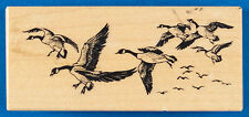 PSX F-1564 Canada Goose Flock Rubber Stamp - Flying Water Fowl Birds Migration