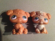 Littlest Pet Shop Brown Poodle Puppy Dogs Retired  Rare #38 and #39 LPS 2004 4cm