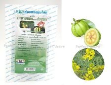 GARCINIA CAMBOGIA SENNA ORGANIC DIET DETOX SLIMMING WEIGHT LOSS TEA 20 TEA BAGS.