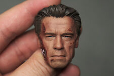 Custom 1/6 Scale BD Brown Hair Arnold T800 Guardian Head Sculpt For HotToys Body