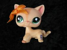 Littlest Pet Shop # 1764 Peach Orange Cat Green Eyes Ribbon Tangerine Kitty