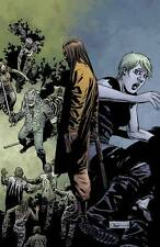 The Walking Dead #117 Image Comic Book First Printing All Out War Part 3
