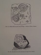 Archaeology Petroglyphs Kerry & Lough Crew Ireland Antique Print 1882