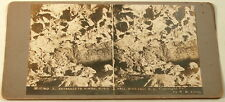 ENTRANCE TO KIMBAL MUSIC HALL WIND CAVE SD SOUTH DAKOTA STEREOVIEW 1907