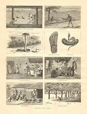 Snakes In India, Reptiles, Snake Charmers, Vintage 1887 Antique Art Print