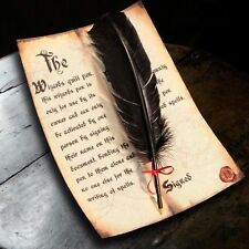 Harry Potter / Hogwarts style Spellwriting Black Feather Quill pen