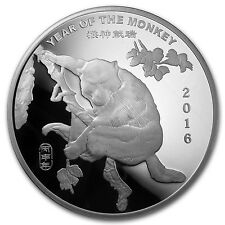10 oz Silver Round - APMEX (2016 Year of the Monkey) - SKU #91860