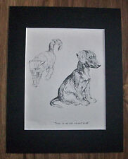 Dachshund Pup Cat Dog Print There Is No Cat Kf Barker 1942 11x14 Bookplate w/Mat