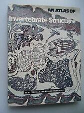 Invertebrate Structure 1973 Biology Wirbellose Struktur Biologie