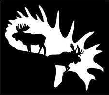 WHITE Vinyl Decal Moose in Antler horn hunt hunting country truck sticker bow