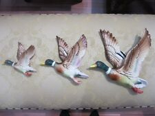 Mallard Flying Ducks, Repro's.