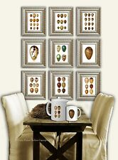 Bird Egg Prints SET OF 9 Easter Decor Bird Egg Print Antique bird egg wall art