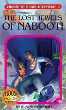 The Lost Jewels of Nabooti Choose Your Own Adventure #4