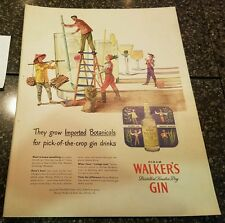 "1952Walker's Gin Vintage Magazine Ad ""They grow imported botanicals...."""