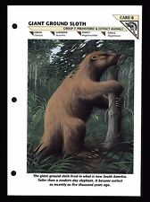 """GIANT GROUND SLOTH"" PREHISTORIC ANIMAL/WILD LIFE FACT FILE INFO-CARD"