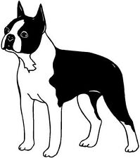 Boston Terrier Dog Vinyl Decal Car Truck Window Sticker