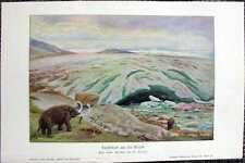 Landschaft aus der Eiszeit Mammut FARBDRUCK von 1903 W. Kranz