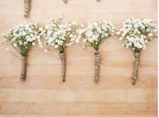 Gyp/Baby's Breath Dried Flowers Buttonhole Boutonnière Wedding X5