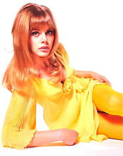 1970's BRITT EKLAND color glamour portrait photo