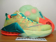 Lebron XII 12 Low Prm LEBRONALD PALMER Sz 10 100% Authentic IX XI 776652 383