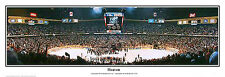 New Jersey Devils 1995 STANLEY CUP CHAMPS Meadowlands Arena Panoramic Poster