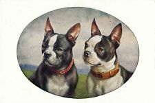 Boston Terrier & French Bulldog Carl Reichert Drawing New  Large Note Cards OVAL