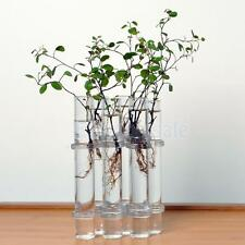 6 Glass Tubes Vase Hanging Bottle Terrarium Plant Flower Container Decor DIY