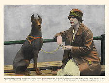 DOBERMAN PINSCHER OLD STYLE DOG AND LADY OWNER AT SHOW GREETINGS NOTE CARD