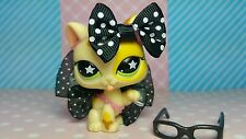 Littlest Pet Shop Katze ♡☆  Licking Tabby Cat Kitty ☆♡  Accessoires Zubehör