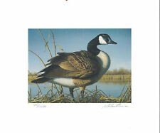 RW64 1997 FEDERAL DUCK STAMP PRINT CANADA GOOSE by Robert Hautman