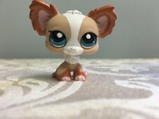 Littlest Pet Shop LPS Chihuahua Dog Bronze Shimmery Ears Blue Eyes 1082