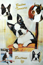 Boston Terrier Dog Gift Present Wrap