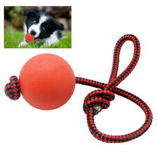 Soild Indestructible Cat Puppy Dog Play Balls with Rope Chewing Training Toy Fun