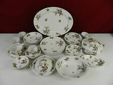 34 Piece Haviland Schleiger 684 Bird Pattern With No Trim  Dinnerware Set
