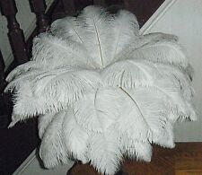 5 Premium Quality Natural WHITE OSTRICH FEATHERS 10-12 inches long for decoratio