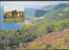 Devon Postcard - Exmoor Farm and Country Holidays     LC5285