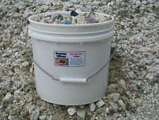 THE MINE BOSS BUCKET! 3 gallons of rough mine ore with assorted gems & minerals!