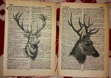 STAG ART 2 PRINTS ON ORIGINAL ANTIQUE DICTIONARY BOOK PAGES Vintage UNIQUE