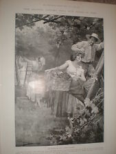 Grape Picking in Italy by Ximenes 1905 print Ref L