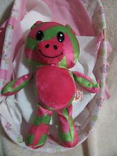 "9"" Pink & Green Teddy Bear by Peek a Boo"