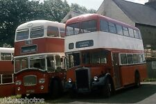 Weardale BUF268C & BED732C Stanhope 1981 Bus Photo