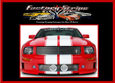 FORD MUSTANG RALLY PINSTRIPE RACING KIT VINYL DECAL FACTORY STRIPE 2010 2011