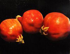 "Wild Pomegranates-  Sale Priced  -$170 off  18x14x1/8"",oil/panel,"