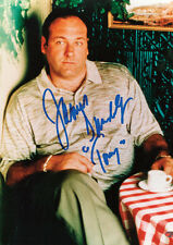 The Sopranos James Gandolfini copy Autos POSTER